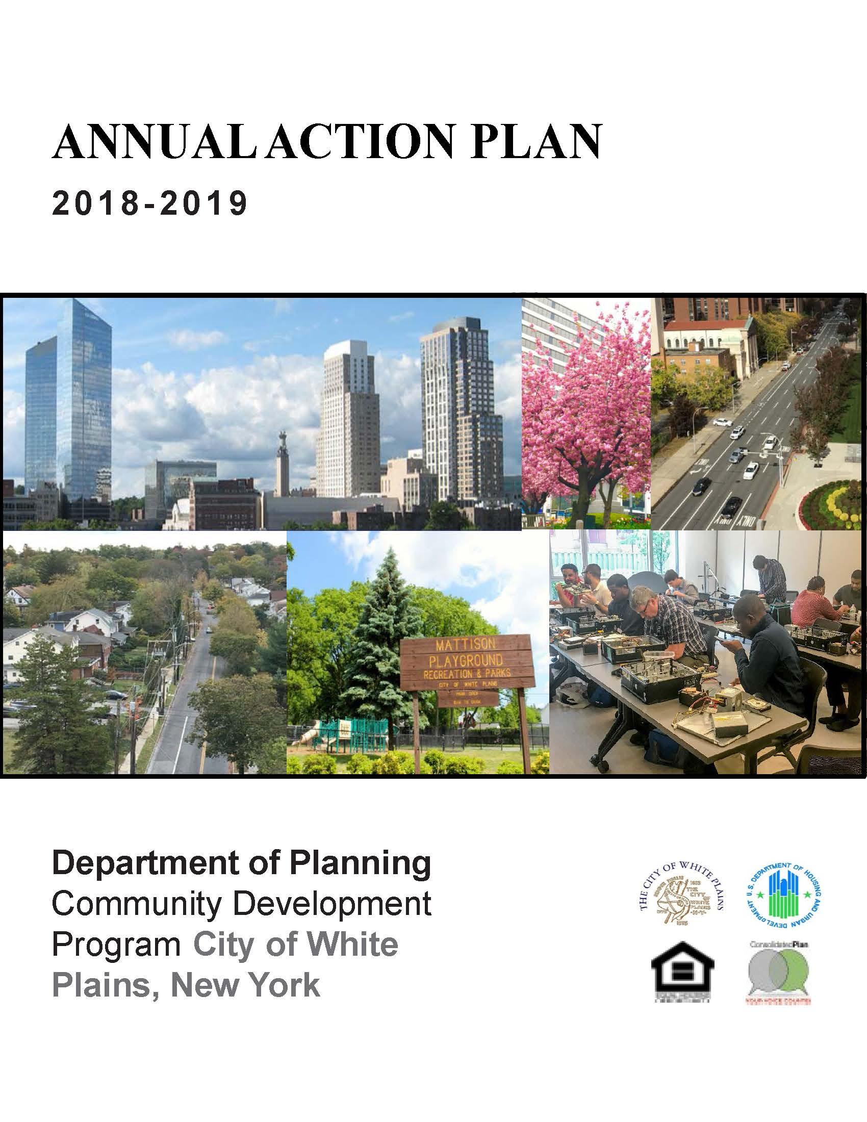 2018-19 Annual Action Plan Select-able Report Cover
