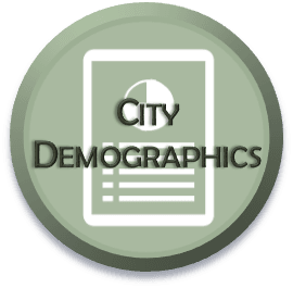 City Demographics Select-able Icon