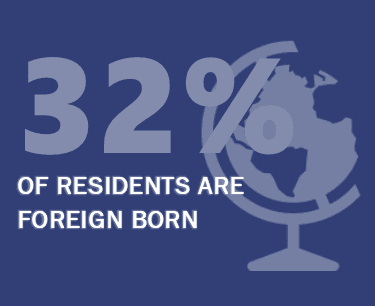Foreign Born Population Infographic